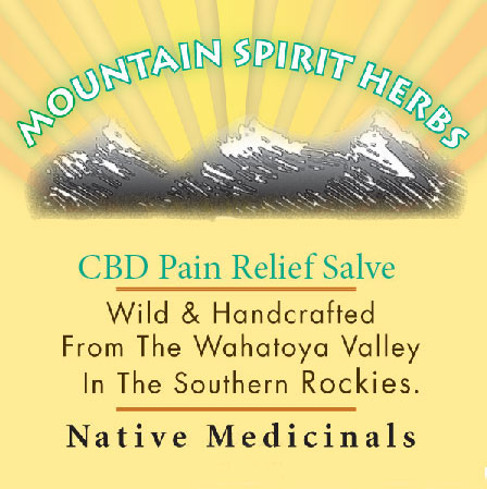 CBD Pain Relief Salve (Save by the Case)